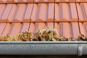 Gutter Cleaning in Vancouver, WA by Dr. Roof, Inc.