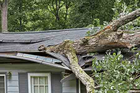 emergency roof services long beach wa